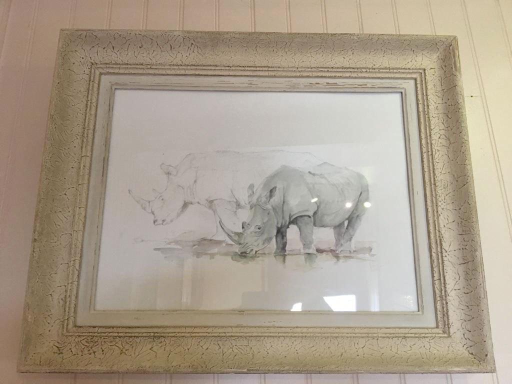 rhinoceros-65x40