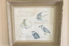 herons-cendres-planche-animaliere-65x50cm