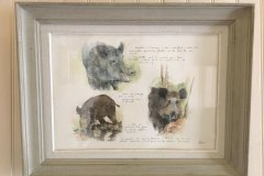 sangliers-planche-animaliere-65x50cm-cadre-patine