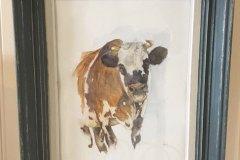 vache-normande-32x26cm-cadre-bois-patine