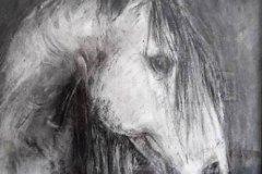 fusain-cheval2
