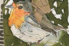 oiseau-04